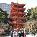 Fukuoka Walking Tour 20180227_fw4 (3)