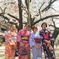 Fukuoka Kimono Dress Up 20180325_kd1 (3)
