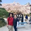 Fukuoka Walking Tour 20180403_fw (1)