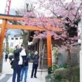Fukuoka Walking Tour 170320_121919